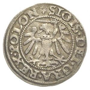 szeląg 1547, Gdańsk, patyna