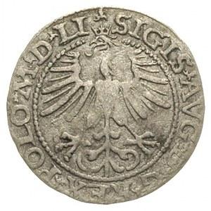 półgrosz 1564, Wilno, odmiana orzeł w koronie, Ivanausk...