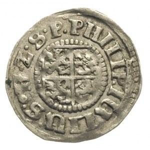 grosz 1611, Nowopole (Franzburg), Hildisch 183