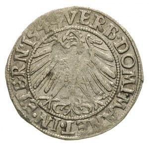 grosz 1544, Legnica, FuS 1363