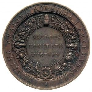 medal nagrodowy Komitetu Wystawy w Krakowie 1887, Aw: W...