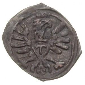 denar 1608, Poznań, T. 7, patyna