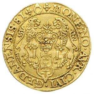 dukat 1581, Gdańsk, Aw: Popiersie króla w prawo i napis...