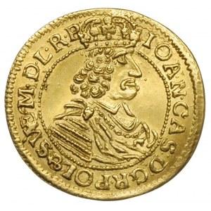 dwudukat 1665, Toruń, Aw: Popiersie króla w prawo i nap...