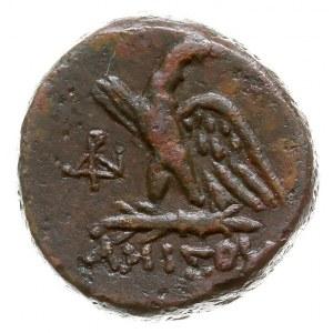 Pont, Amisos, 100-85 pne, AE-20, Aw: Głowa Zeusa w praw...