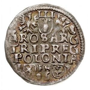 trojak 1596, Poznań, Iger P.96.4.a, patyna