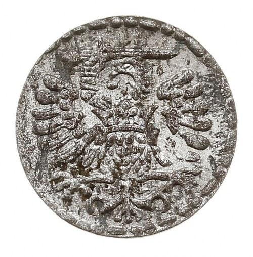 denar 1596, Gdańsk, duże cyfry daty, ładny połysk menni...