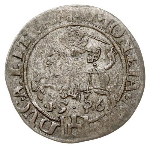 grosz 1536, Wilno, odmiana z literą F pod Pogonią, Ivan...