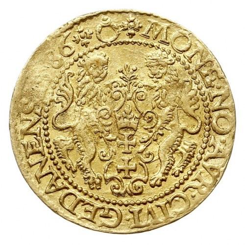 dukat 1586, Gdańsk, Aw: Popiersie króla w prawo i napis...