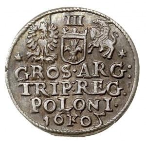 trojak 1605, Kraków, Iger K.05.b (R1), patyna
