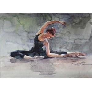 Aleksander Franko, Baletnica