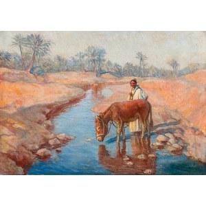 Mateusz Ludwik Hajdukiewicz (1886-?), Na pustyni