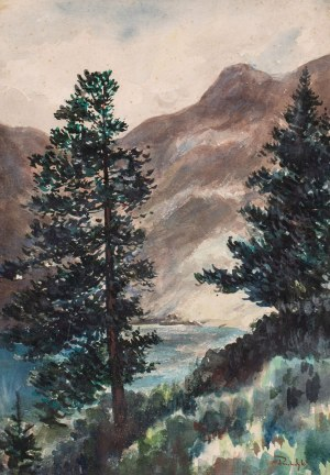 Marian PUCHALSKI