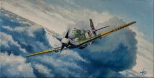 Łukasz Czernicki, P-51B (E. Horbaczewski), 2019