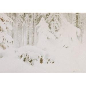 Maciej NEHRING (1901-1977), Las zimą
