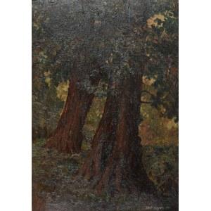 Romana LIPEŻ (1917-2003), Drzewa, 1940