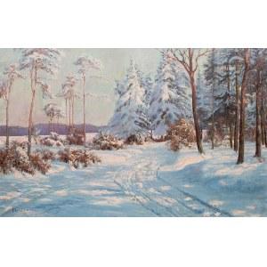 Paul Weimann (1867 Wrocław -1945 Jelenia Góra), Zima w Karkonoszach