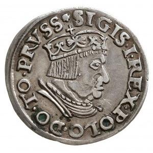 trojak 1537, Gdańsk, odmiana z końcówką napisu DANNC3K,...
