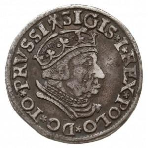 trojak 1537, Gdańsk, odmiana z końcówką napisu GEDANEN,...