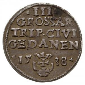trojak 1538, Gdańsk, końcówka napisu na awersie PRVS, i...