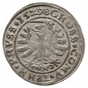 grosz 1529, Toruń, miecz trzymany w łapie po prawej str...