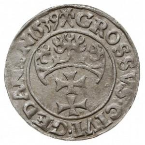 grosz 1539, Gdańsk, PN.13-Dut.187, CNG 64.I.a, lekko ni...