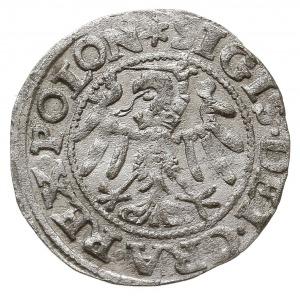 szeląg 1547, Gdańsk, gwiazdka na awersie, rozetka na re...