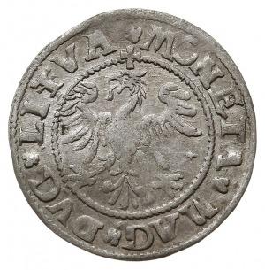 półgrosz 1545, Wilno, końcówki napisu L/LITVA, Cesnulis...