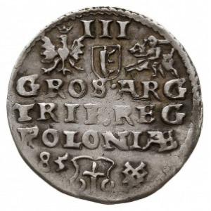 trojak 1585, Poznań, odmiana z małą głową króla, Iger P...