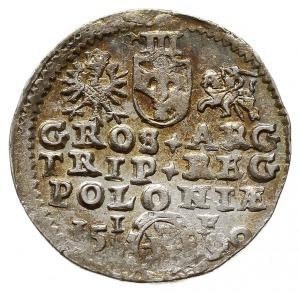 trojak 1590, Olkusz, Iger O.90.3.e (R1), bardzo ładny