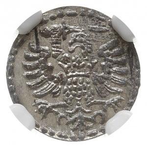 denar 1594, Gdańsk, CNG 145.V, Kop. 7460 (R2), moneta w...