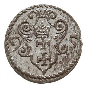 denar 1595, Gdańsk, piękny