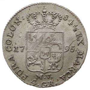 złotówka 1795, Warszawa, Plage 304, H-Cz. 3377, Tyszk. ...
