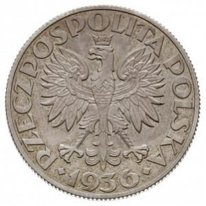 5 złotych 1936, Warszawa, Żaglowiec, na rewersie wypukł...