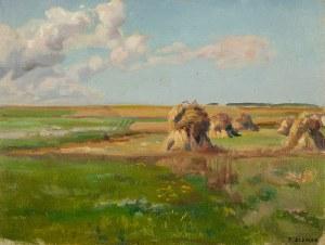 Teodor Ziomek (1874 Skierniewice-1937 Warszawa), Snopki siana na łace