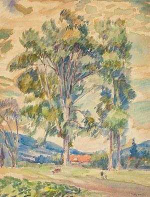 Jan Wojnarski (1879 Tarnów - 1937 Kraków), Wieś w górach