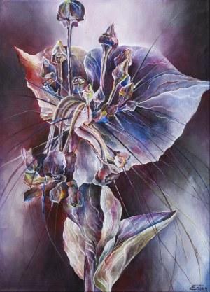 Vanessa Świgulska, Kwiat nietoperza, 2019