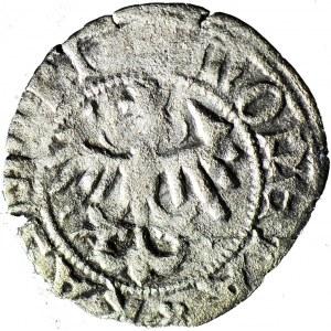 RR-, Kazimierz Jagiellończyk 1446-92, Półgrosz MK, R5
