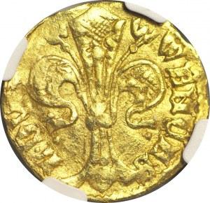 RR-, Śląsk, Wacław I Legnicki (1342-1364), Goldgulden (floren) bez daty