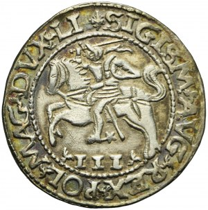 Zygmunt II August, Trojak