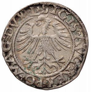 Zygmunt II August, Półgrosz 1562, Wilno - Topór L/LITV