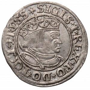 Zygmunt I Stary, Grosz 1533, Toruń
