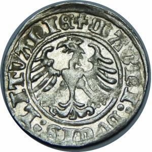 Zygmunt I Stary, Półgrosz 1510, Wilno – duże zero w dacie