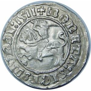 Zygmunt I Stary, Półgrosz 1511, Wilno – dwukropek