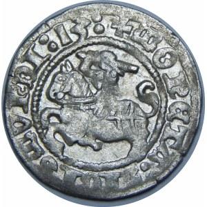 Zygmunt I Stary, Półgrosz 1513, Wilno – dwukropek