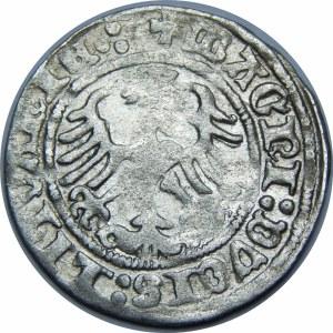Zygmunt I Stary, Półgrosz 1513, Wilno – dwukropek, czterokropek – Pierścień