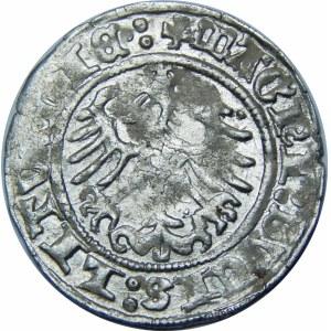 Zygmunt I Stary, Półgrosz 1514, Wilno – trzykropek