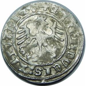 Zygmunt I Stary, Półgrosz 1515, Wilno – czterokropek