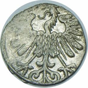 Zygmunt II August, Denar 1558, Wilno – podwójna 8