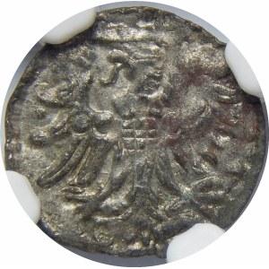 Zygmunt II August, Denar 1554, Gdańsk
